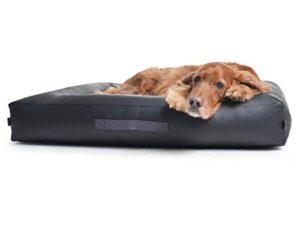 Hundebett Kunstleder Padsforall